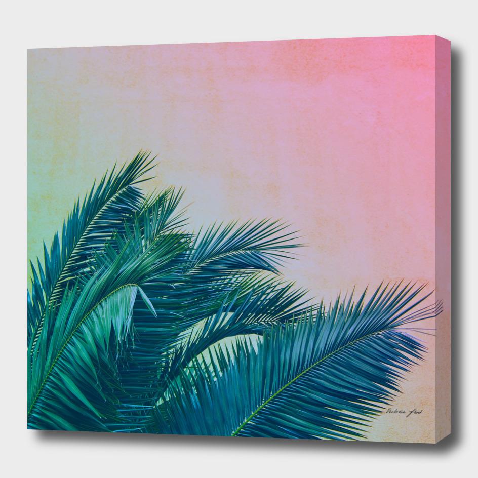 Palm III
