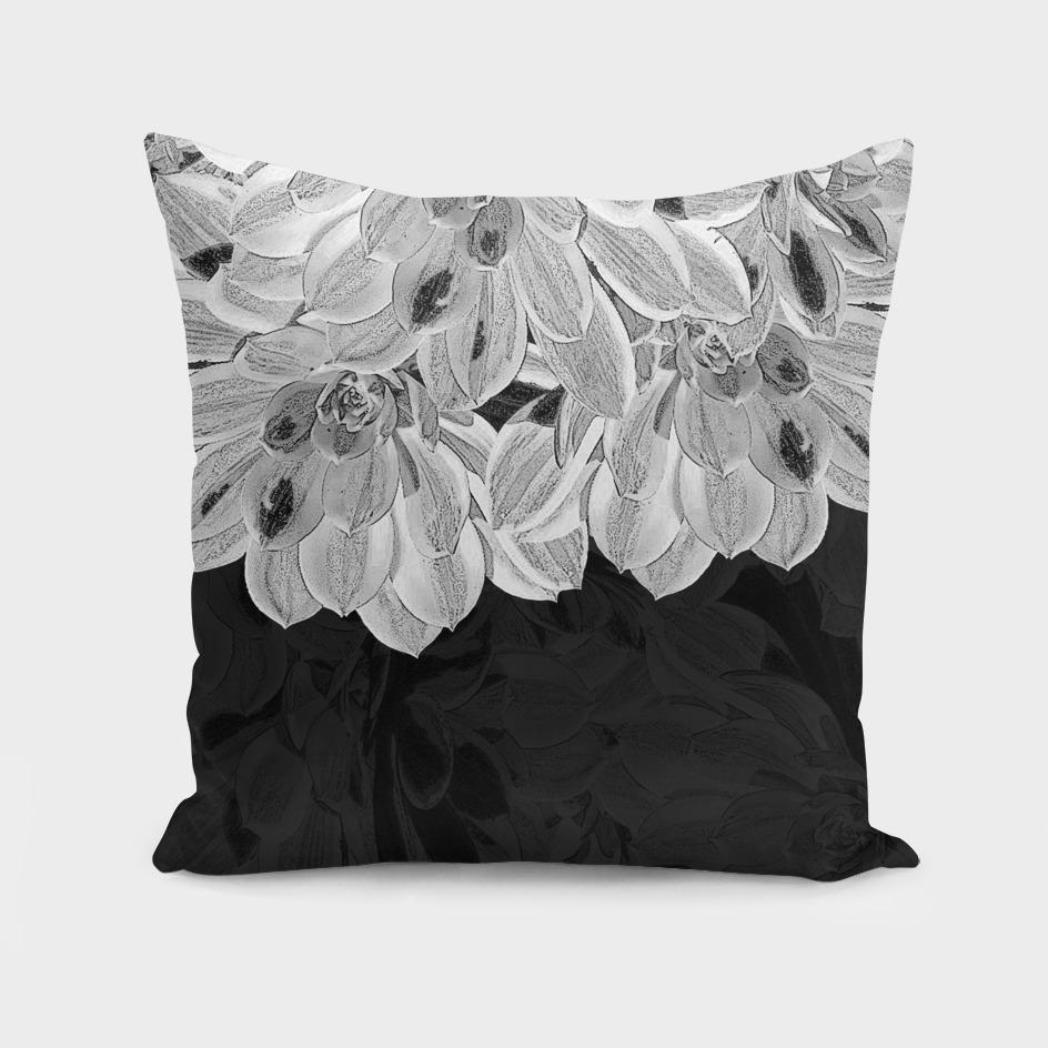 Elegant Black and White Flowers Design