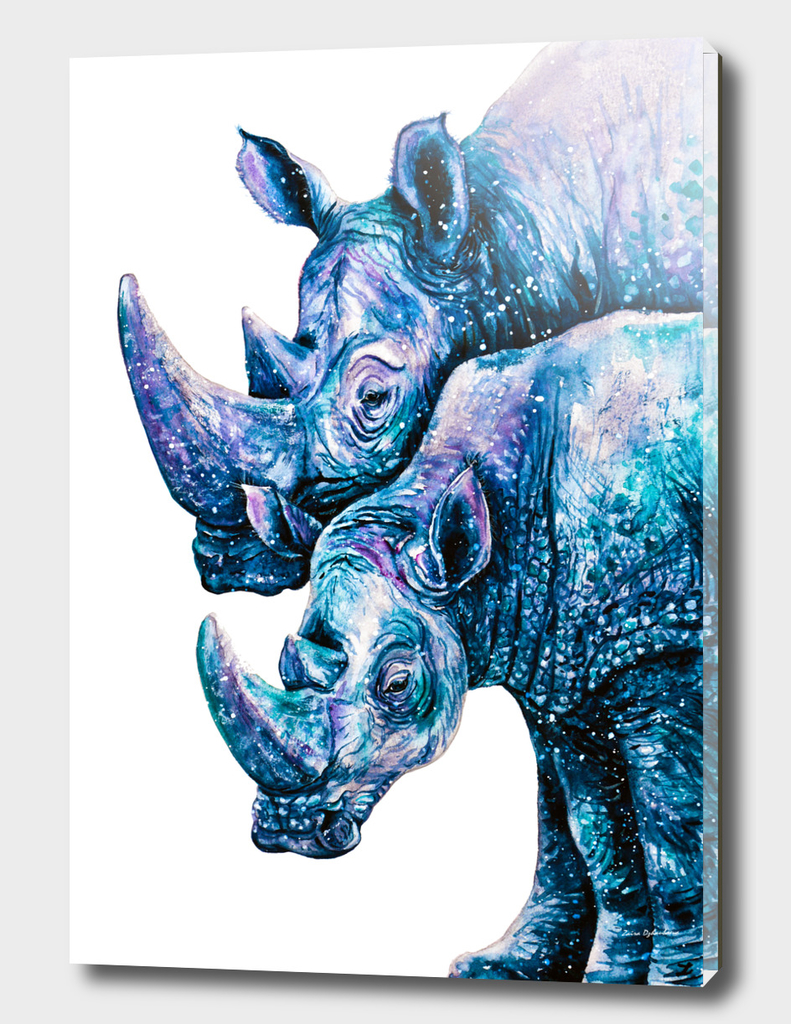 Rhinoceros Couple