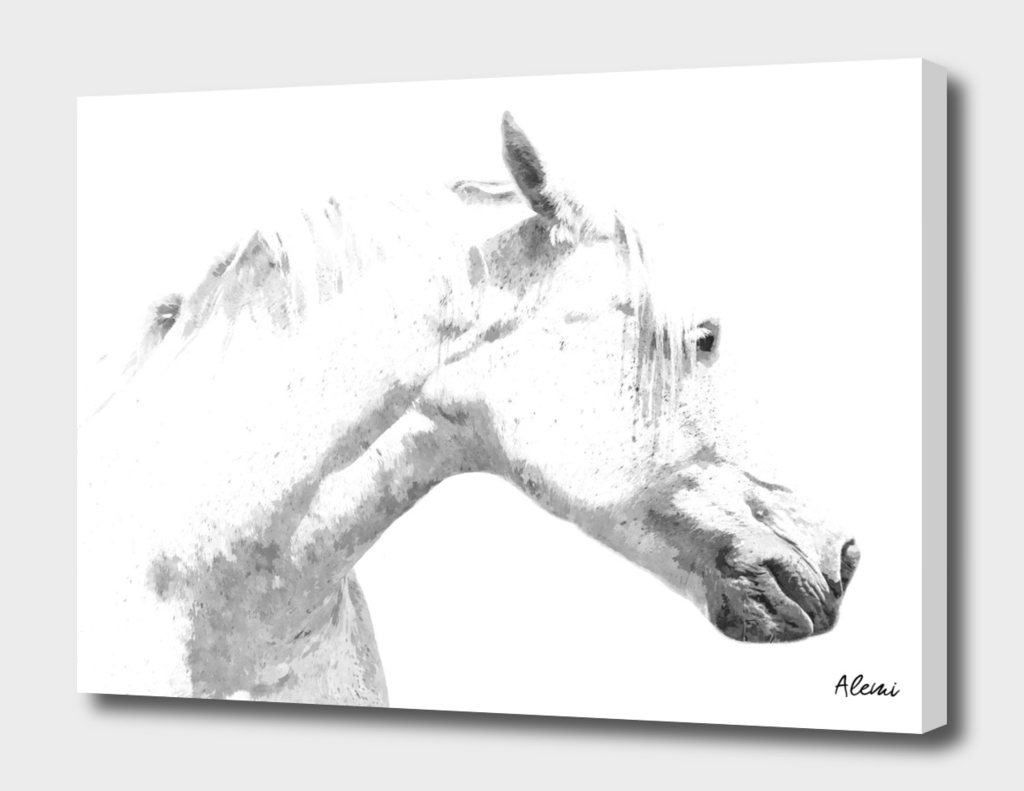 White Horse Profile