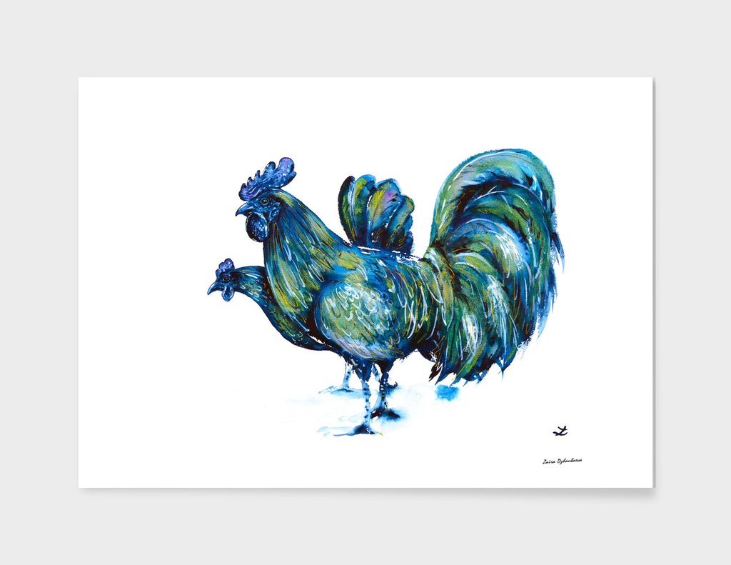 Ayam Cemani Pair