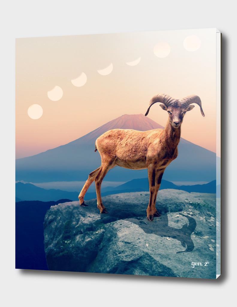 Mountain Ibex by GEN Z
