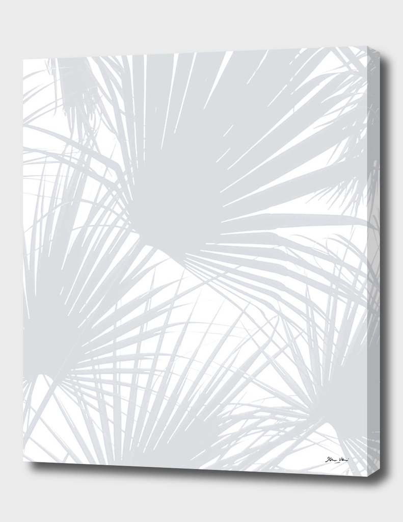 Pale Grey Tropical Leaves