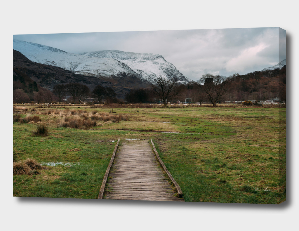 Wales_9