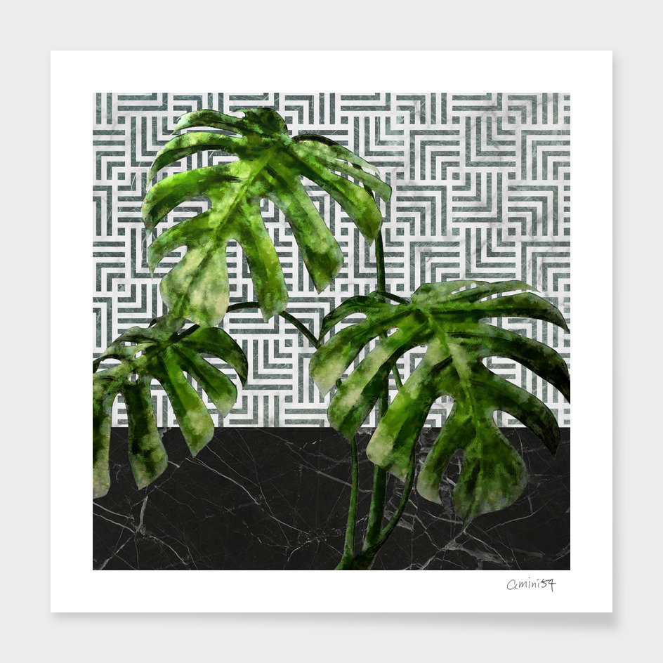 Monstera Leaves on Black Marble and Tiles