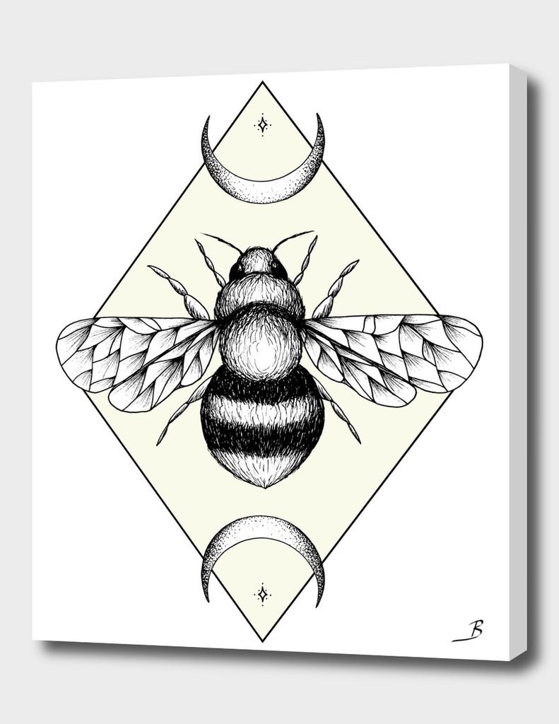 Bee Confident