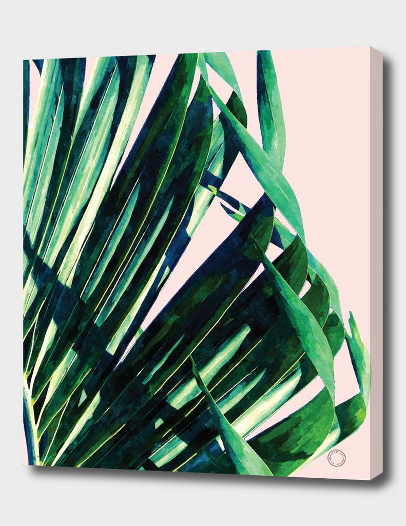 Palm V2