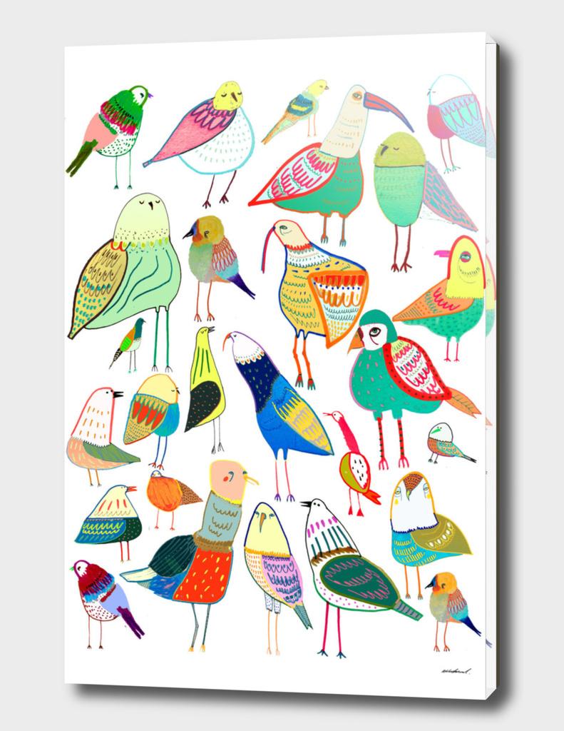 Birdds