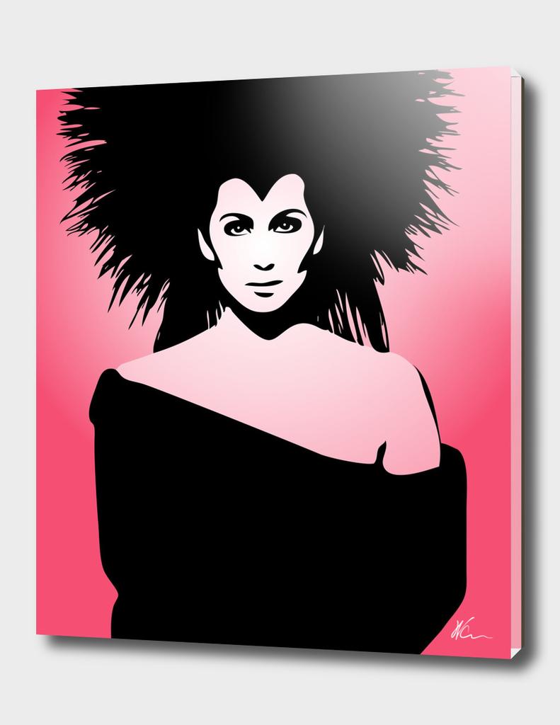 Cher | Pop Art