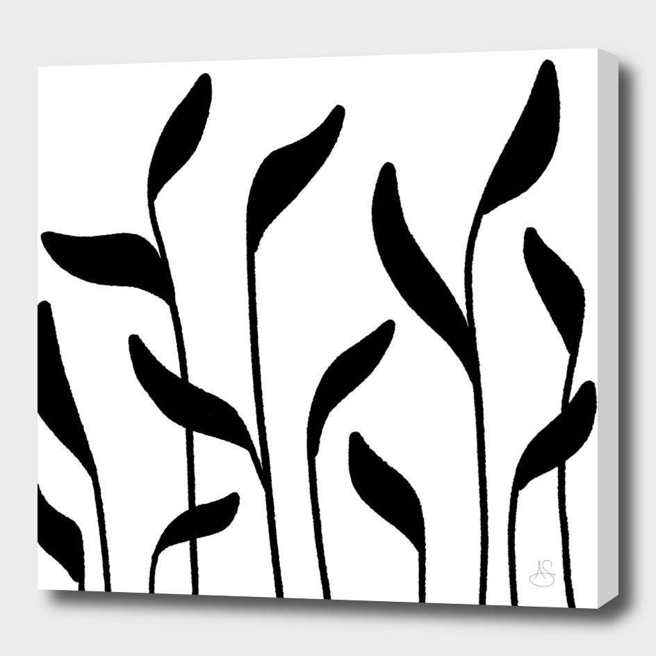 Tall Leafy Grass