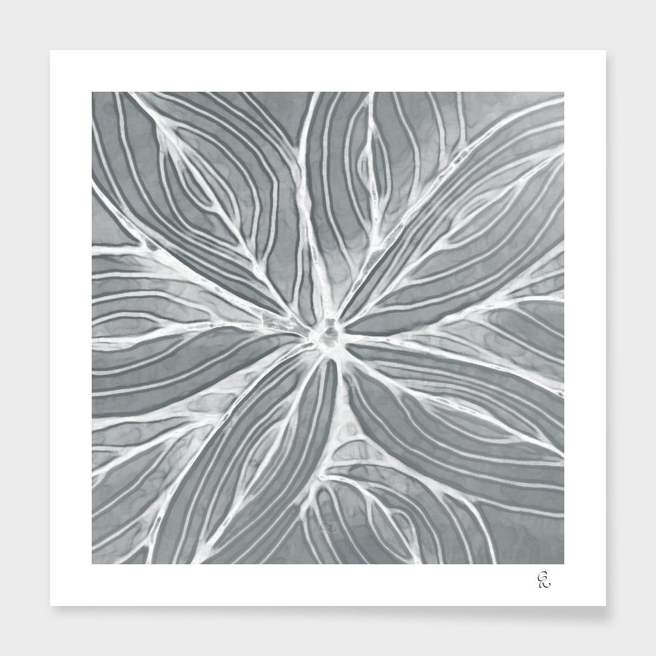 Doodled Aura-Leah DM02 Silver Gray