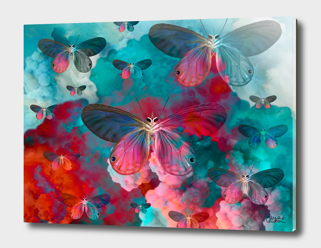 """Spring Butterfly love"""