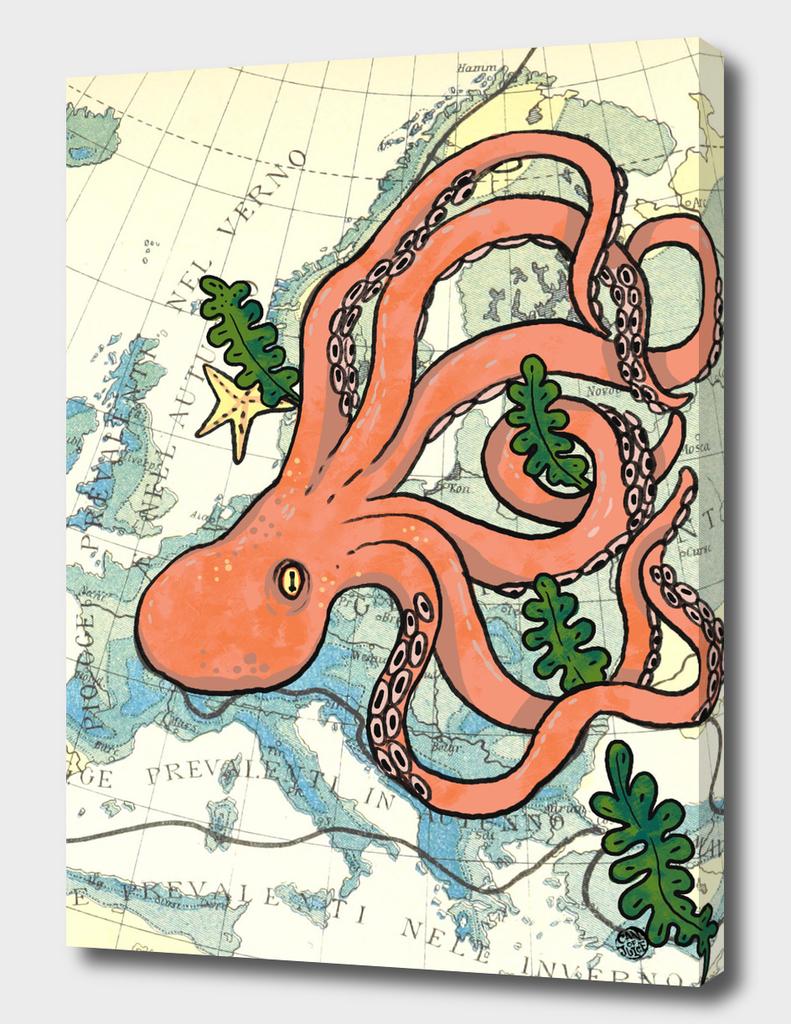 Octomapus