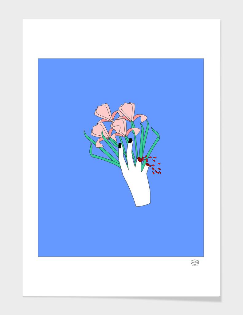 Sharp iris