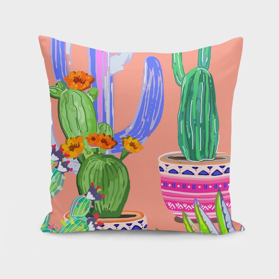 cactus wonderland