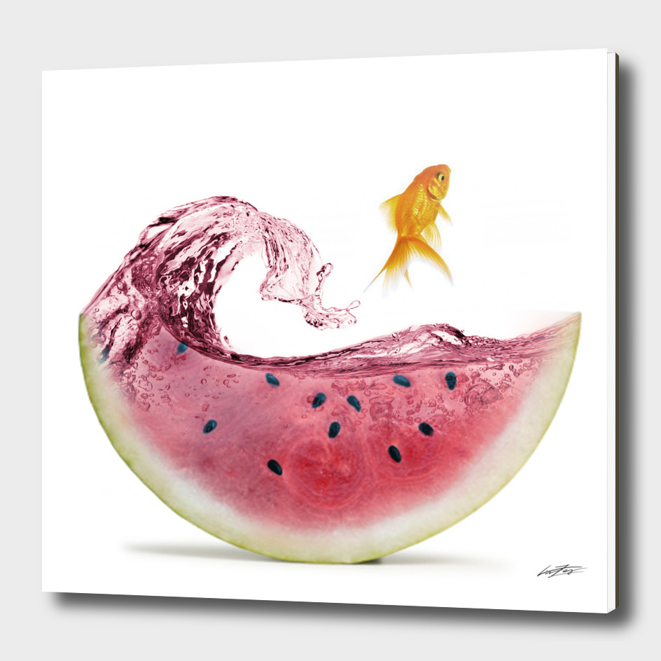 watermelon goldfish II
