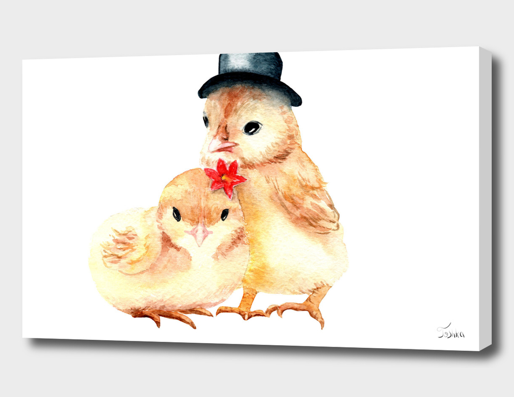 couple of chickens