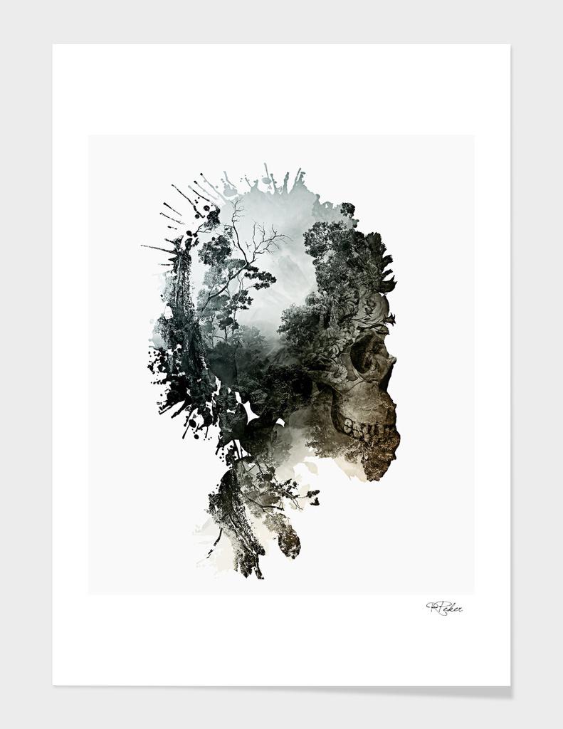 Skull - Metamorphosis