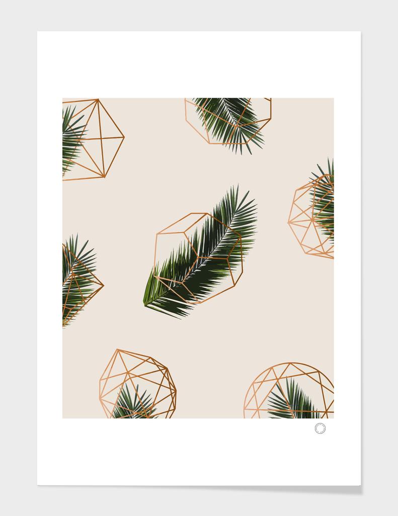 Palm Geometry