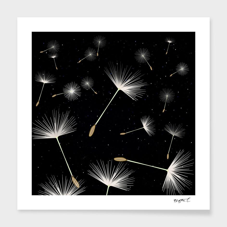 Celestial Dandelions