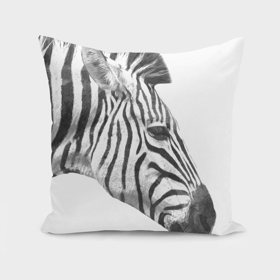 Black and White Zebra Profile