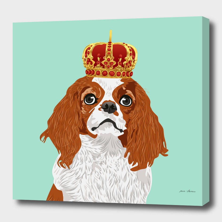 Cavalier King Charles Spaniel for Dog Lovers