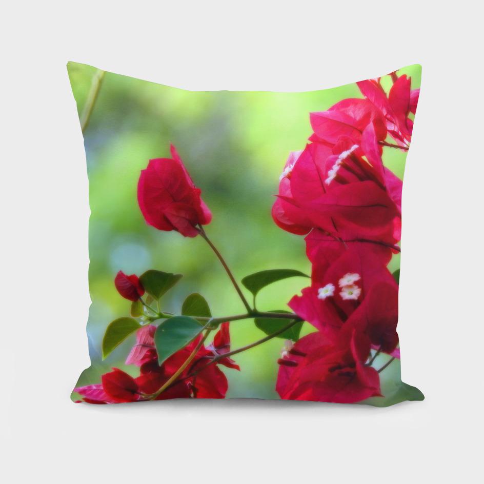 Ruby Blooms