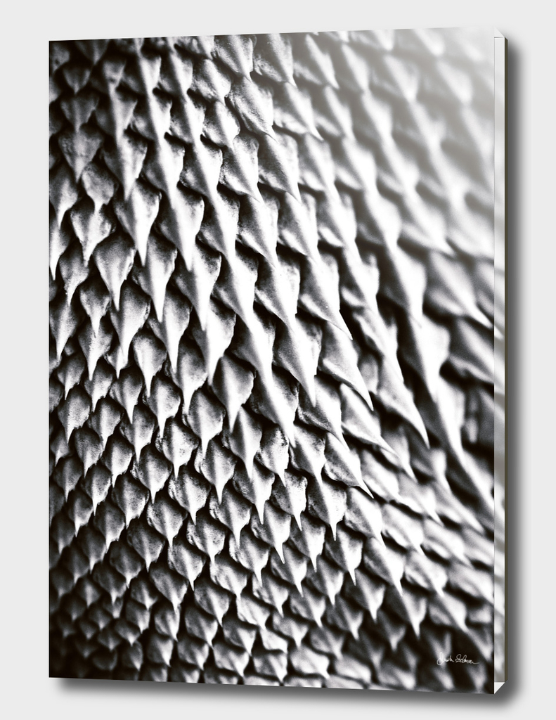 Bearded Dragon Scales Abstract