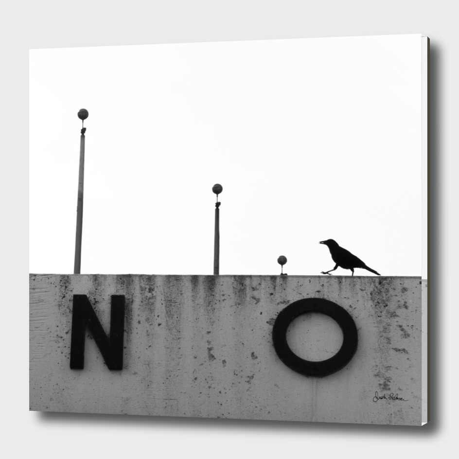 Black and White Crow on a Sign