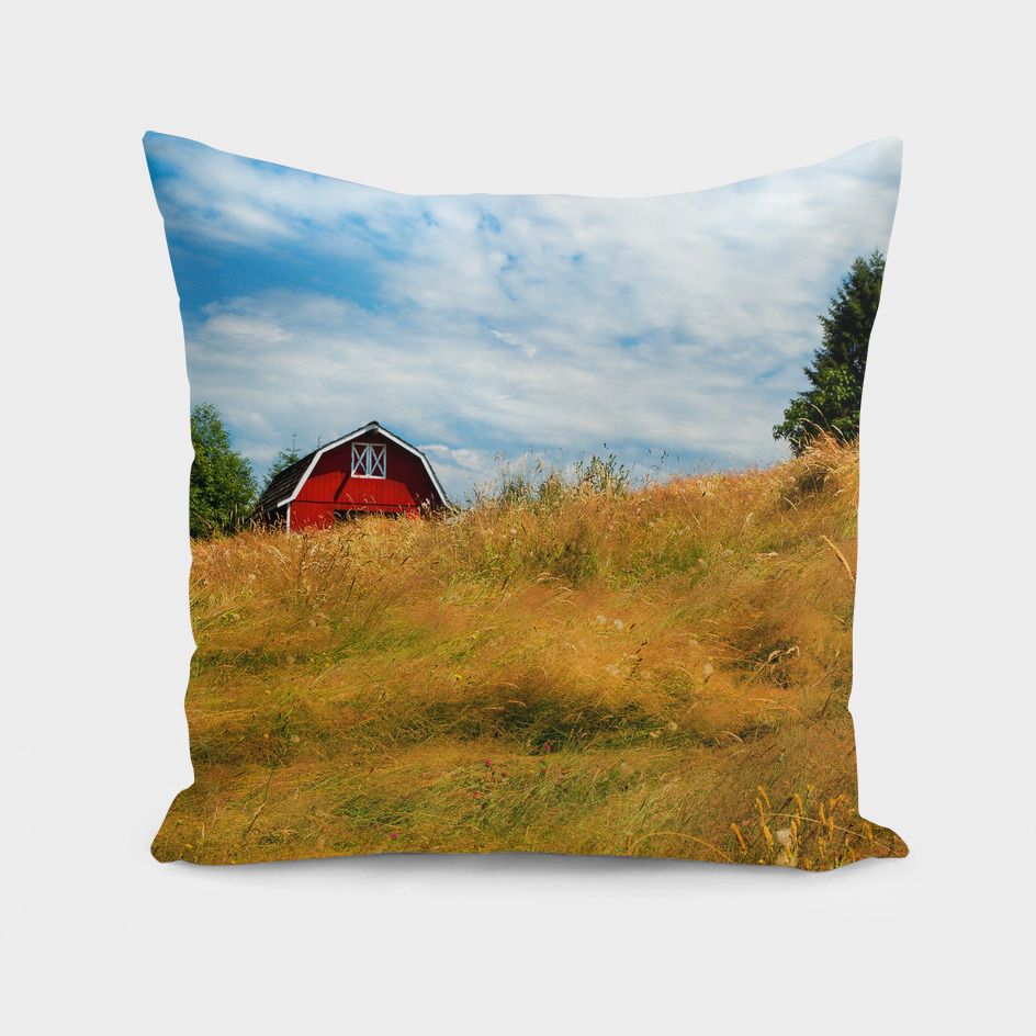 Country Barn on a Summer Day