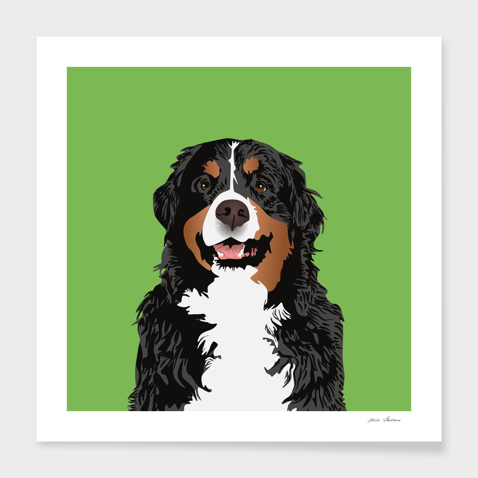 BERNESE MOUNTAIN DOG FOR BERNESE MOUNTAIN PARENTS