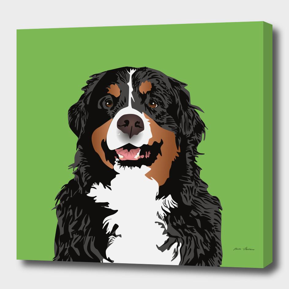 BERNESE MOUNTAIN DOG FOR BERNESE MOUNTAIN PARENTS