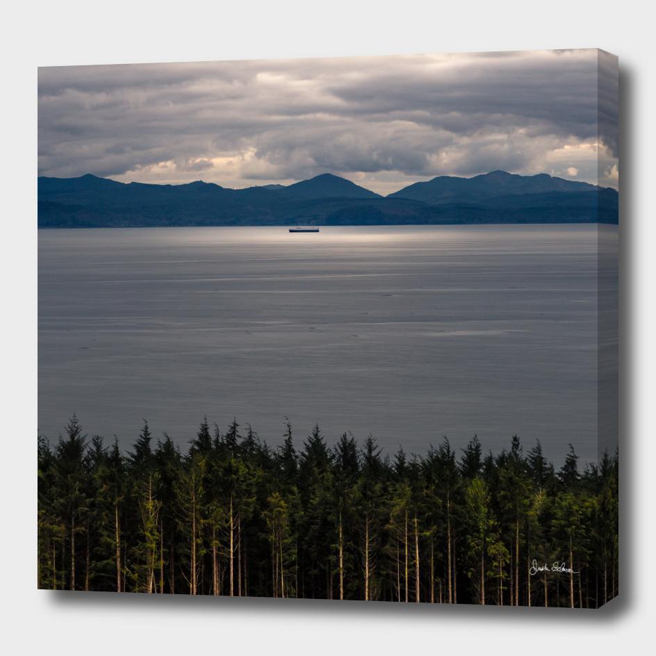 Trees, Sea, and Sun on the Vancouver Island Coast