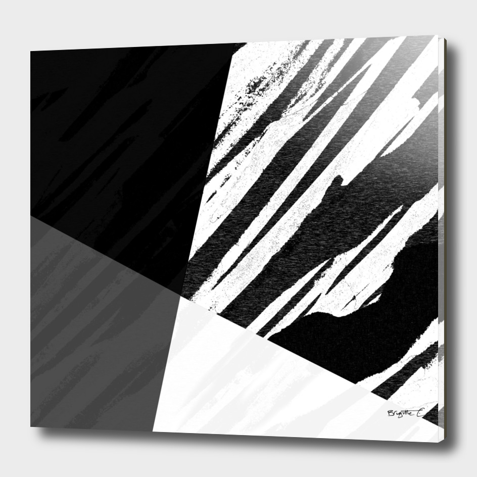Contemporary Bold Zebra Black and White Design