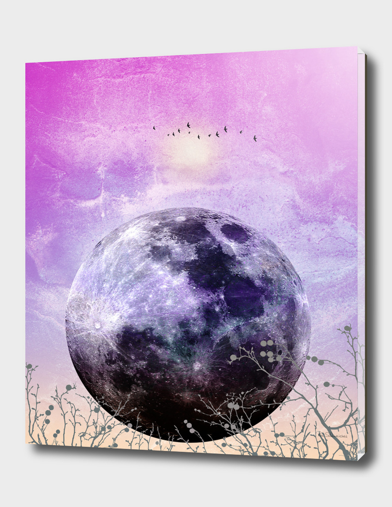 MOON under MAGIC SKY VII