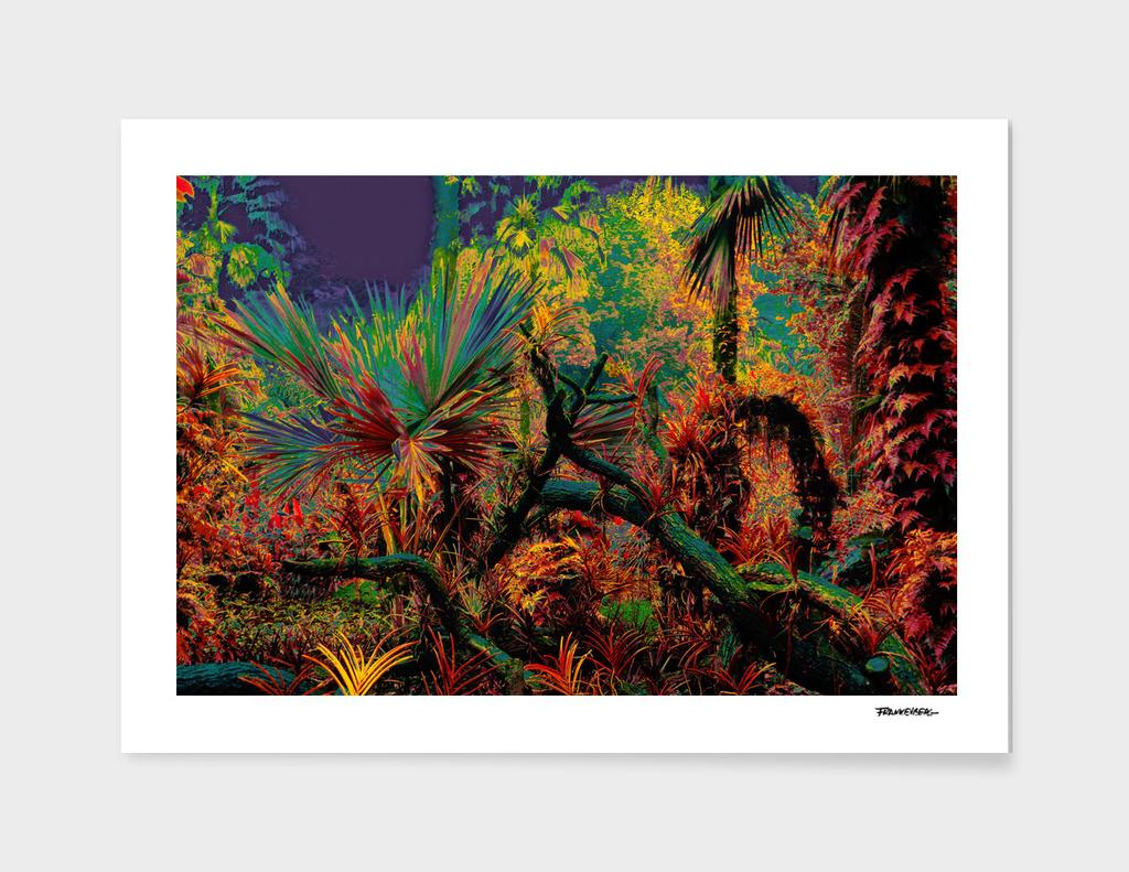 Singapore Bot. Garden 2 – Color
