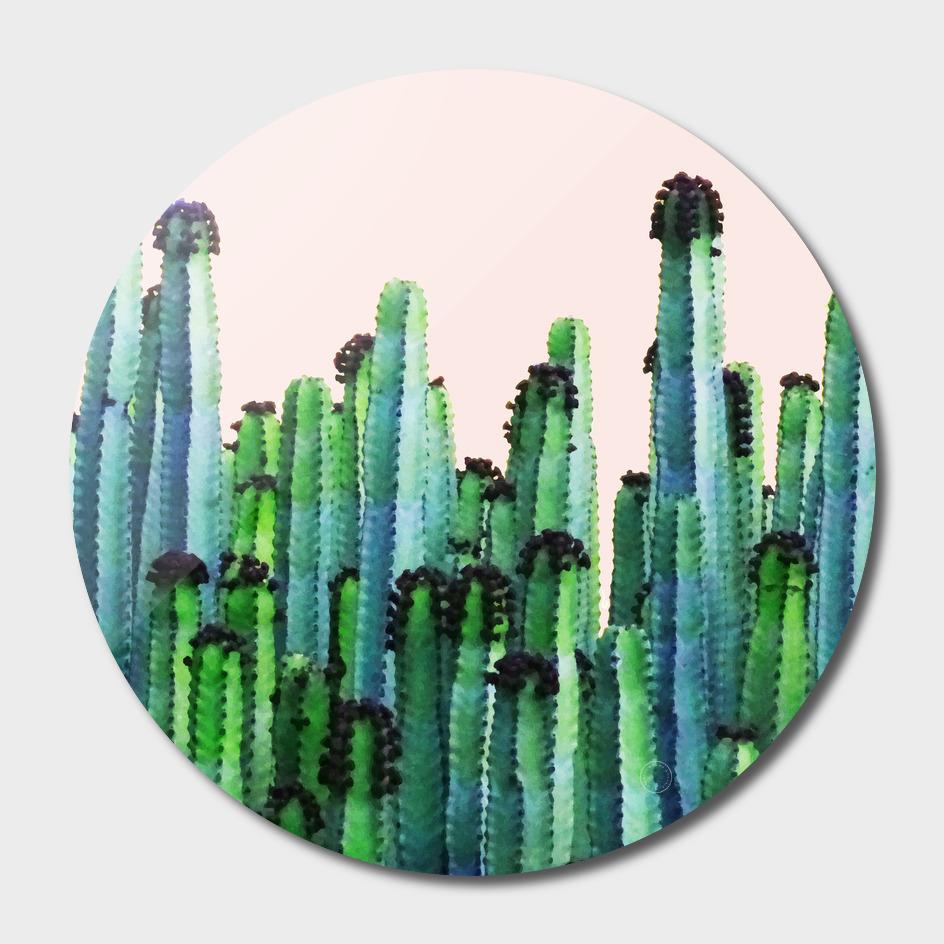 Cactus V5