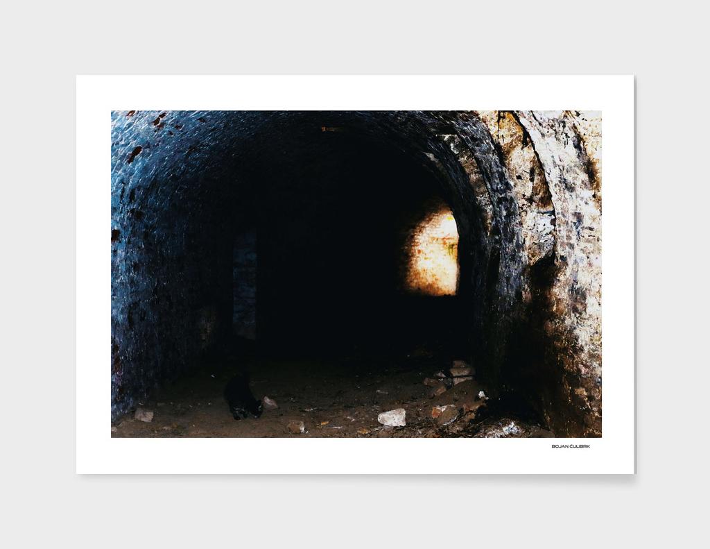 Exploring Tunnels of Petrovaradin Fortress (180)