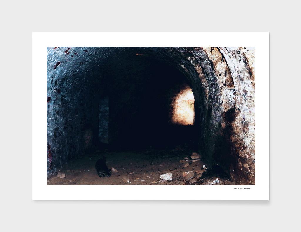 Exploring Tunnels of Petrovaradin Fortress (179)