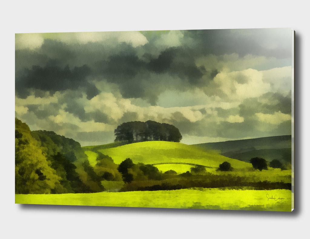 Lady Hill, Hawes, Wensleydale Realism