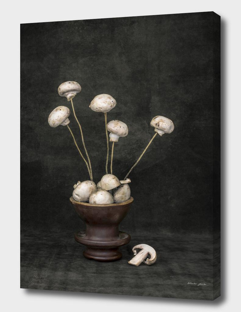 Bouquet of mushrooms
