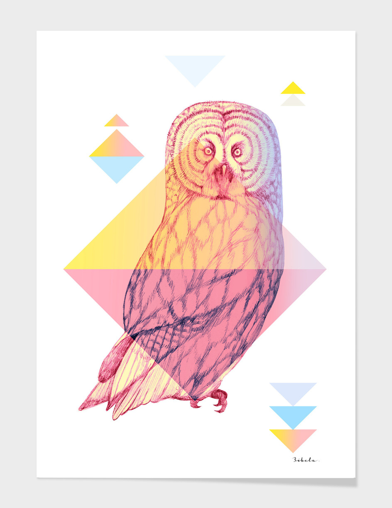 Mystical Woodland Animals: The Owl