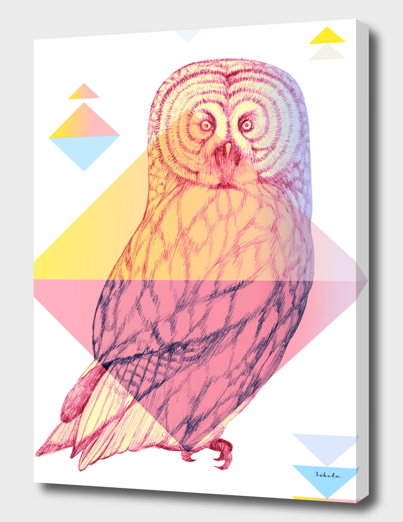 Mystical Woodland Animals: The Owl