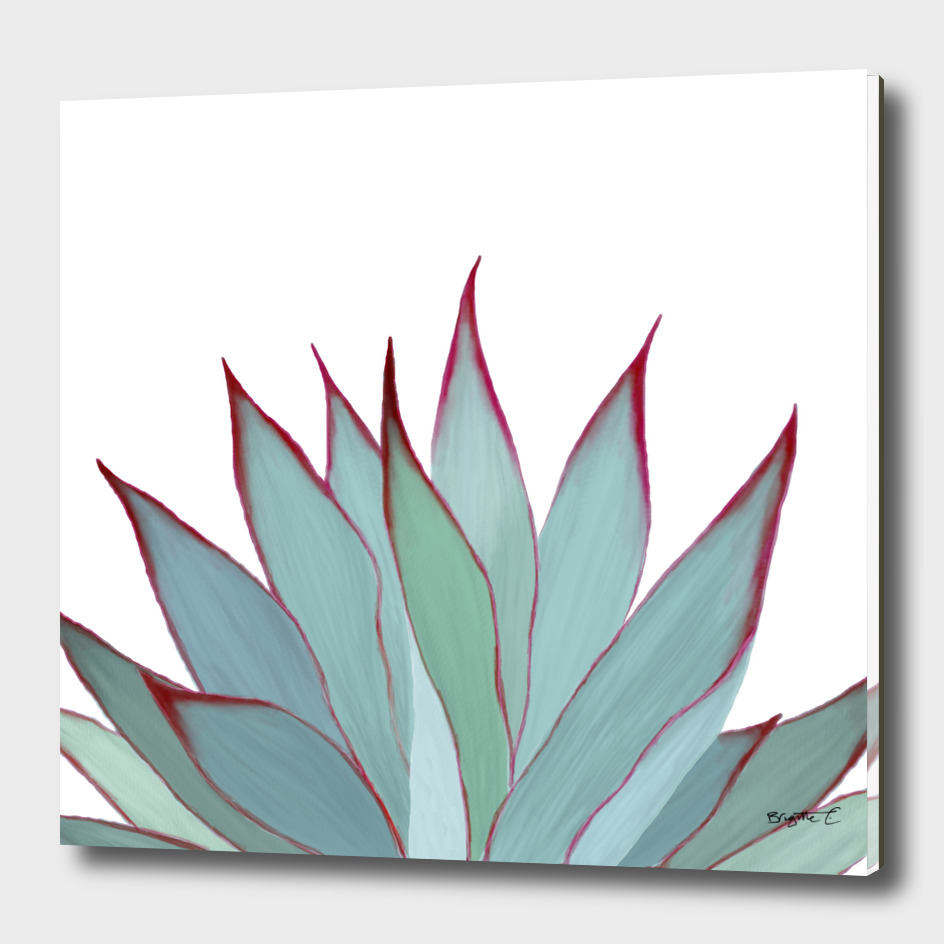 Elegant Agave Fringe Illustration