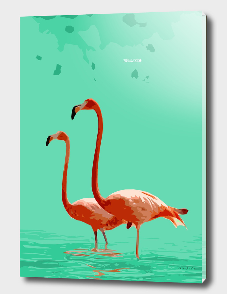 Flamingos on Sea Green