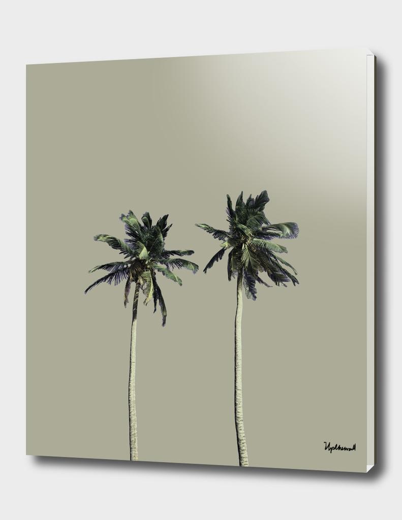Twin Palms (warm grey)