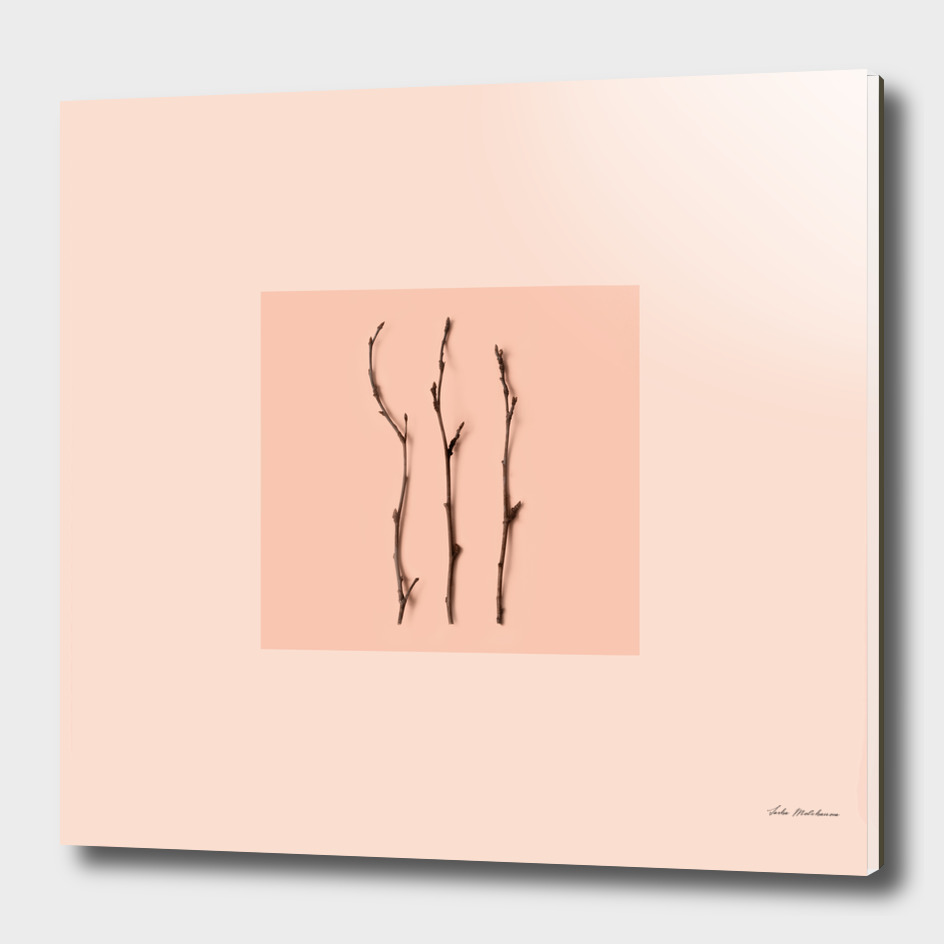 Peach color branches