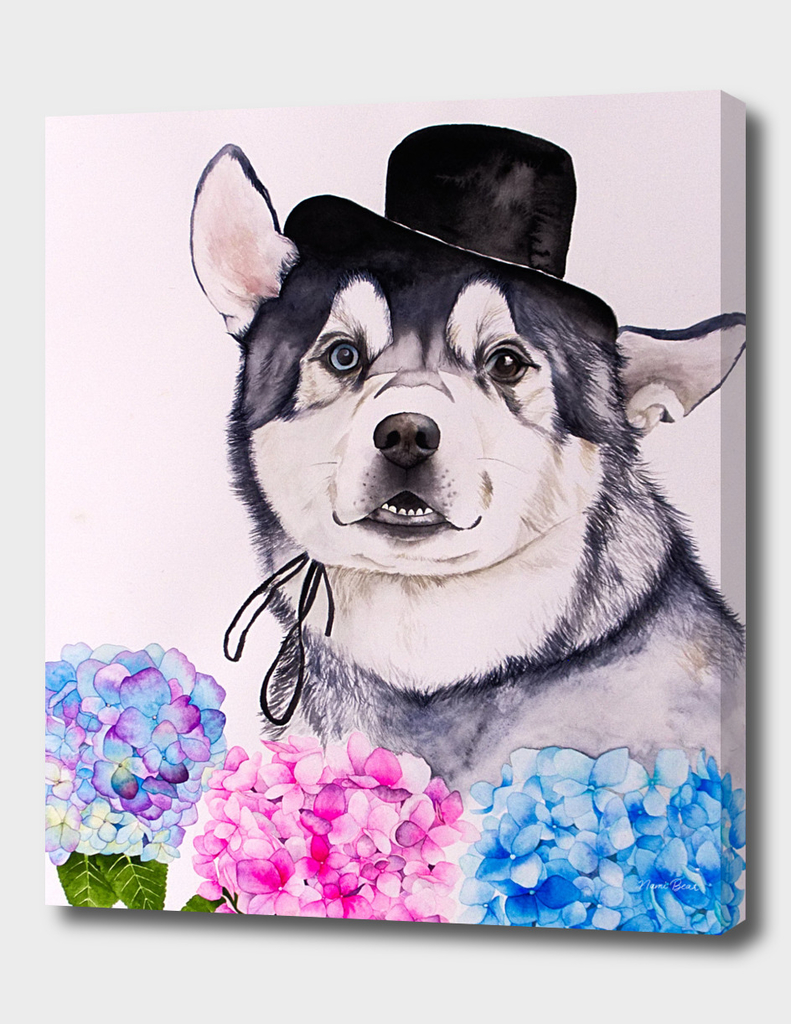 Husky and Hydrangea Flowers Watercolor Painting