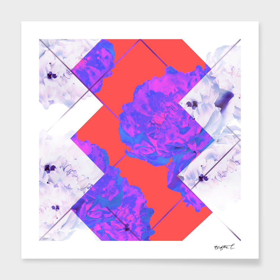 Abstract Geometric Peonies Flowers Design
