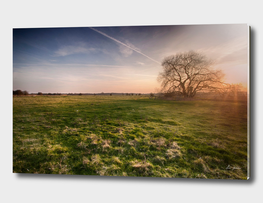 South Willesborough Sunset